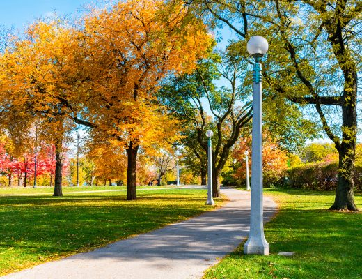 Fun Fall Events in Chicago